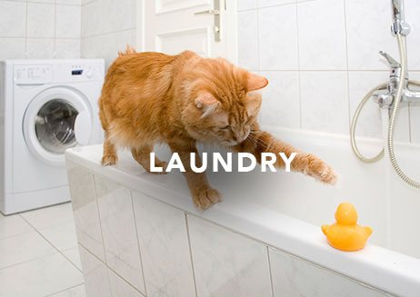 MKB_Home_Laundry